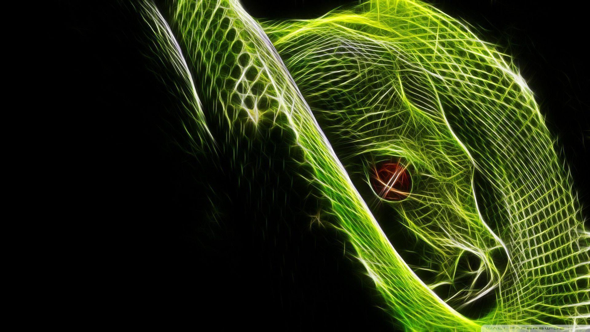 Snake HD Wallpapers- HD Wallpapers Inn