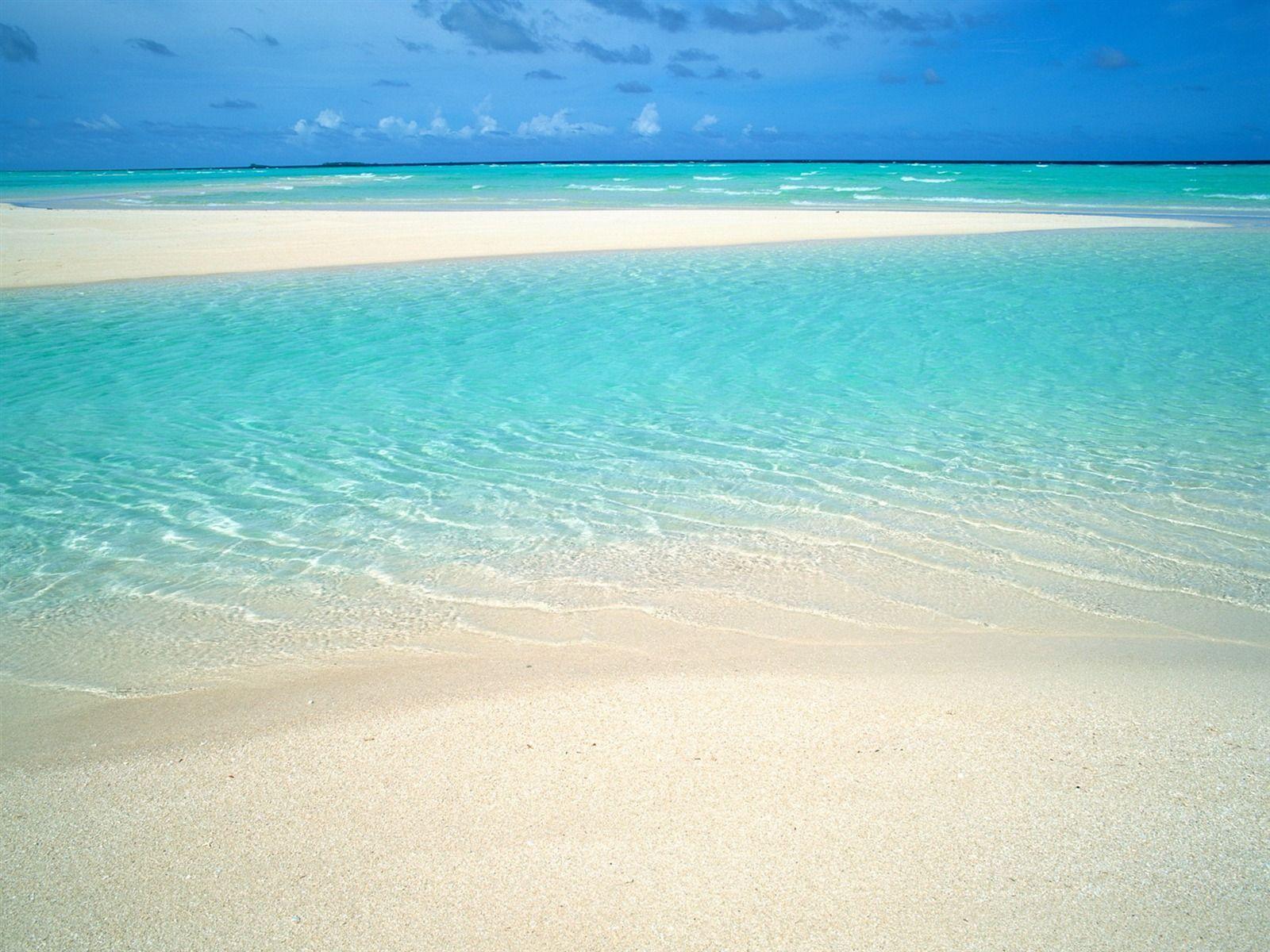 приготовить обои на экран море пляж песок голубая вода довольно крупные особи