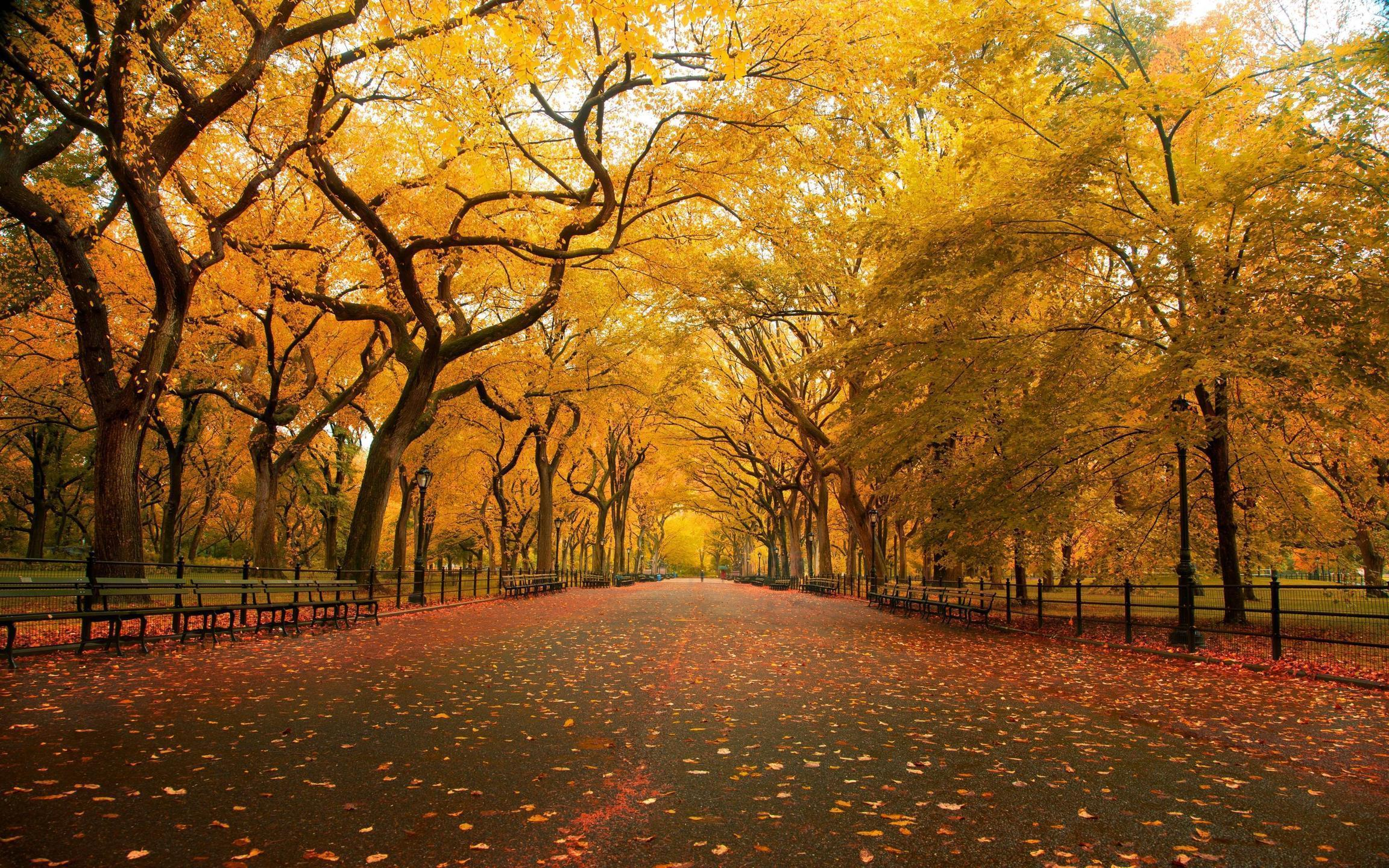 United States, New York, New York City, Central Park in the Fall