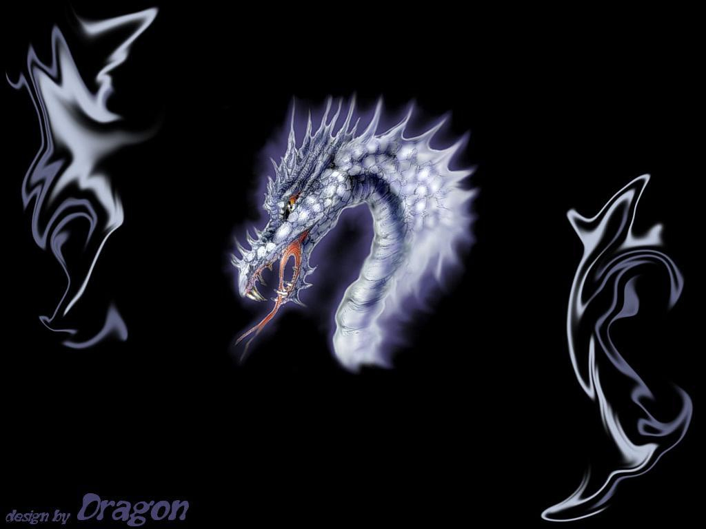 3D Dragon Wallpapers  Wallpaper Cave