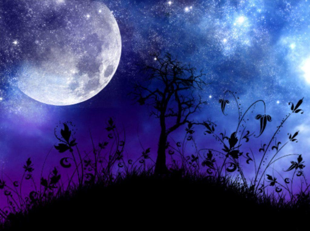 Moonlight Night Wallpapers Wallpaper Cave