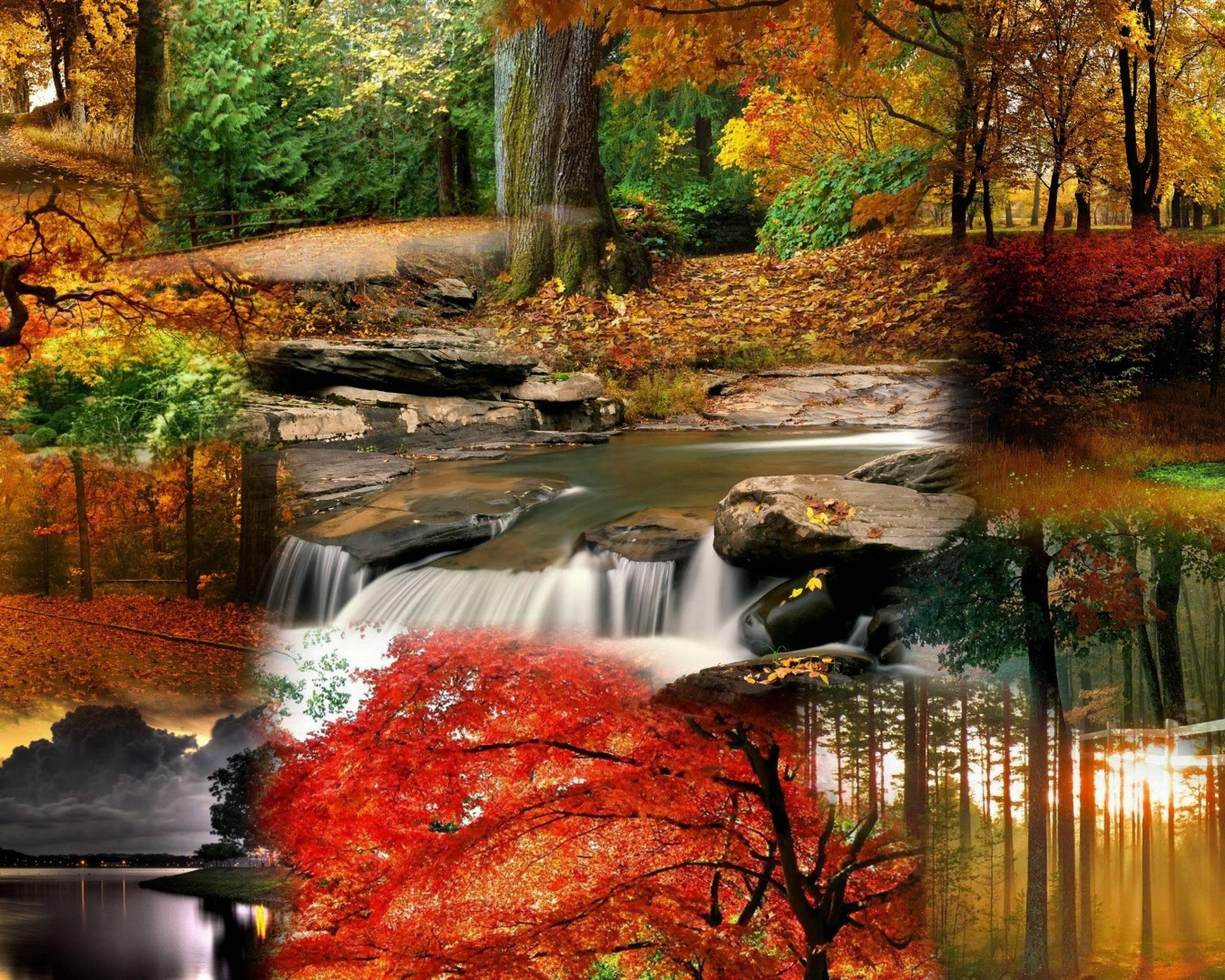 Fall Free Desktop Wallpapers - Wallpaper Cave