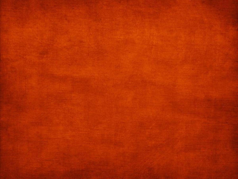 Orange Color Orange Backgrounds Wallpaper Cave