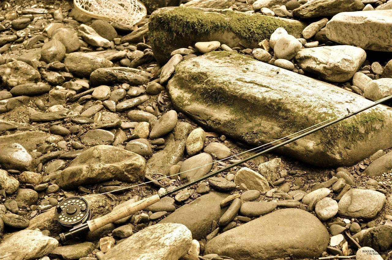 fly fishing wallpapers wallpaper cave