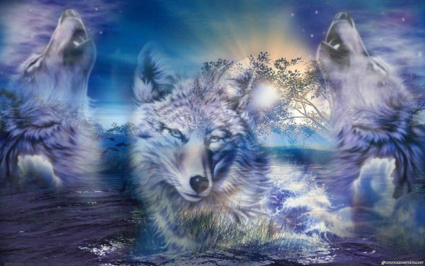 Wolves Wallpapers 35294 Wallpapers HD