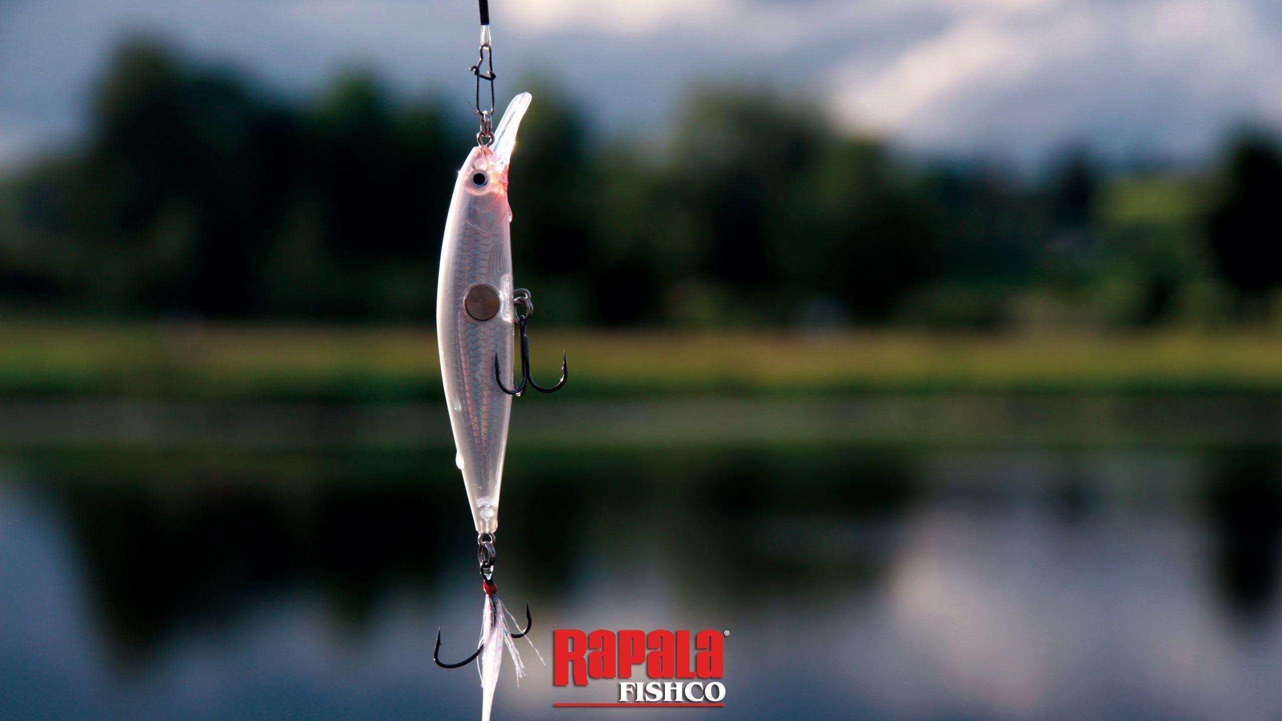 fishing lure wallpaper - photo #16