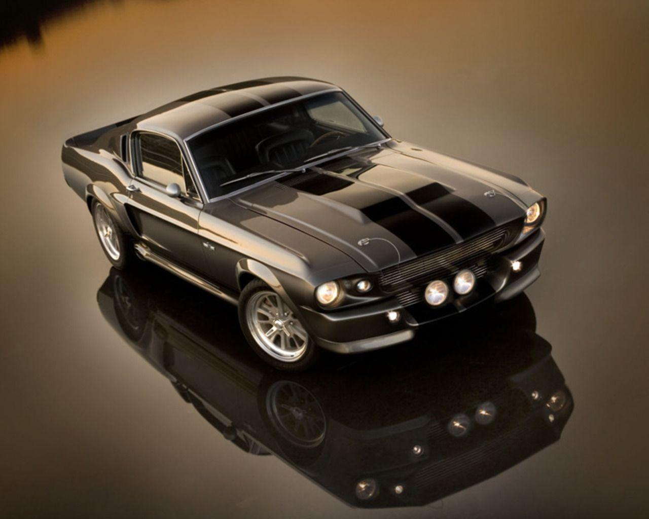 Animals for 1967 shelby mustang wallpapers