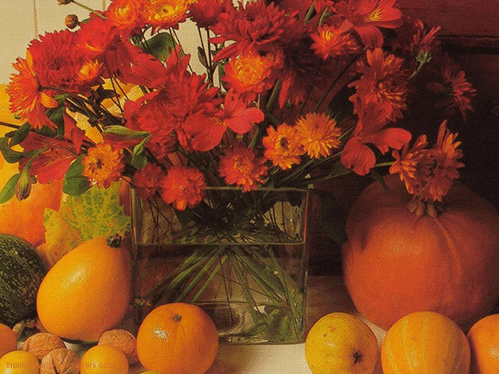 Autumn Flowers And Pumpkins Free Desktop Background