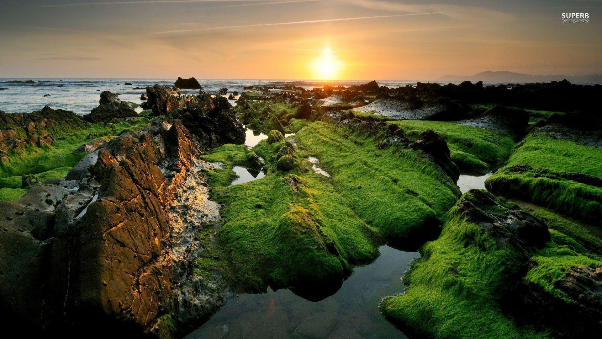 Shore in India wallpaper - Beach wallpapers - #