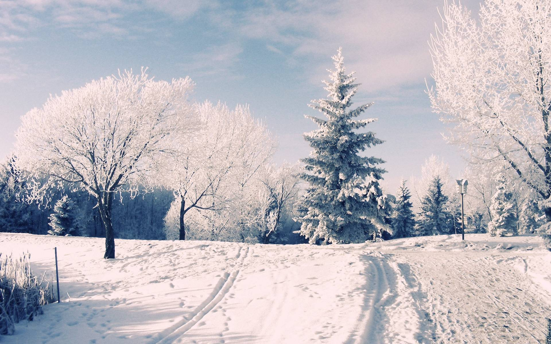 Beautiful Wallpaper Macbook Snow - BVbIbzS  HD_97139.jpg