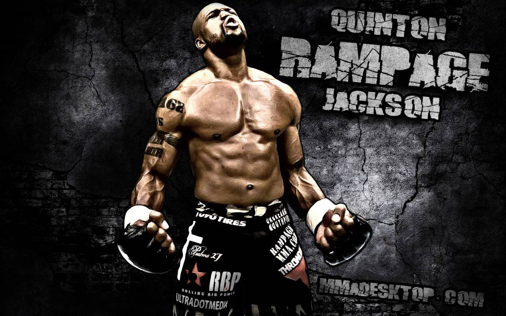 Ufc Fight Wallpapers Wallpaper Cave