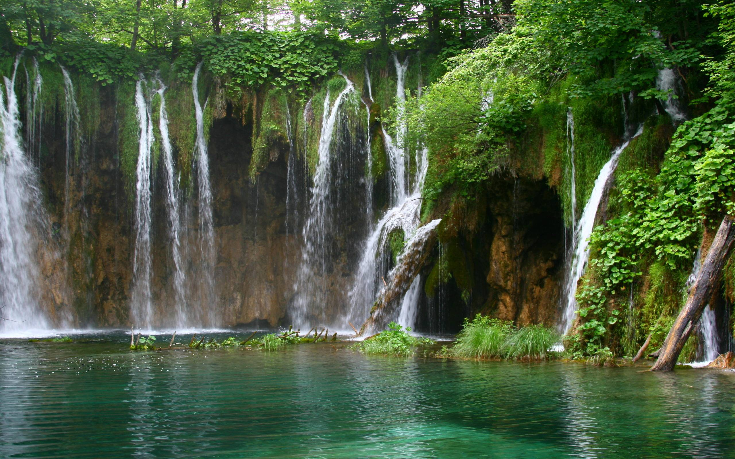 Paradise Nuance Forest Waterfall Wallpaper, iPhone Wallpapers