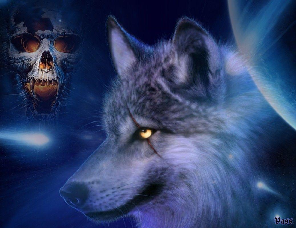 Free Wolves Wallpapers 107941 High Definition Wallpapers