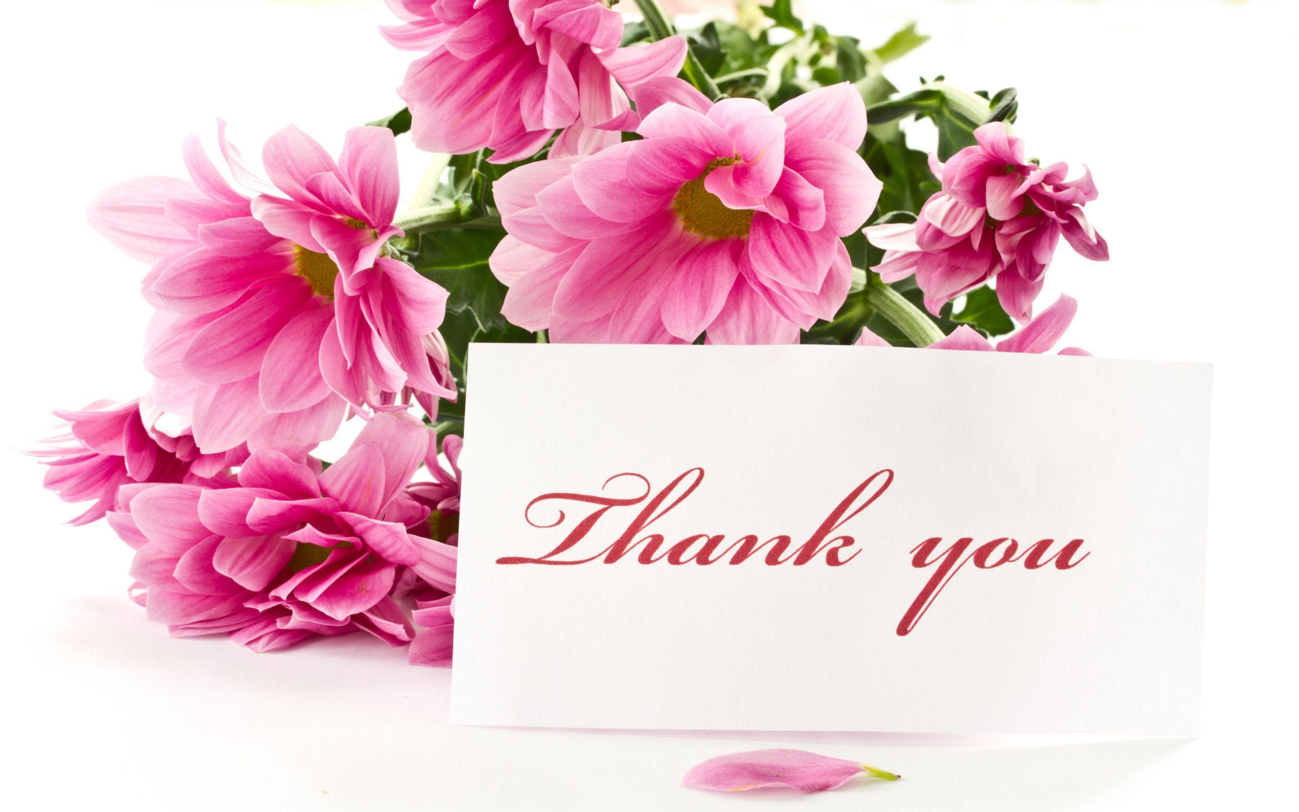 Wallpapers For > Thank You Wallpaper Images