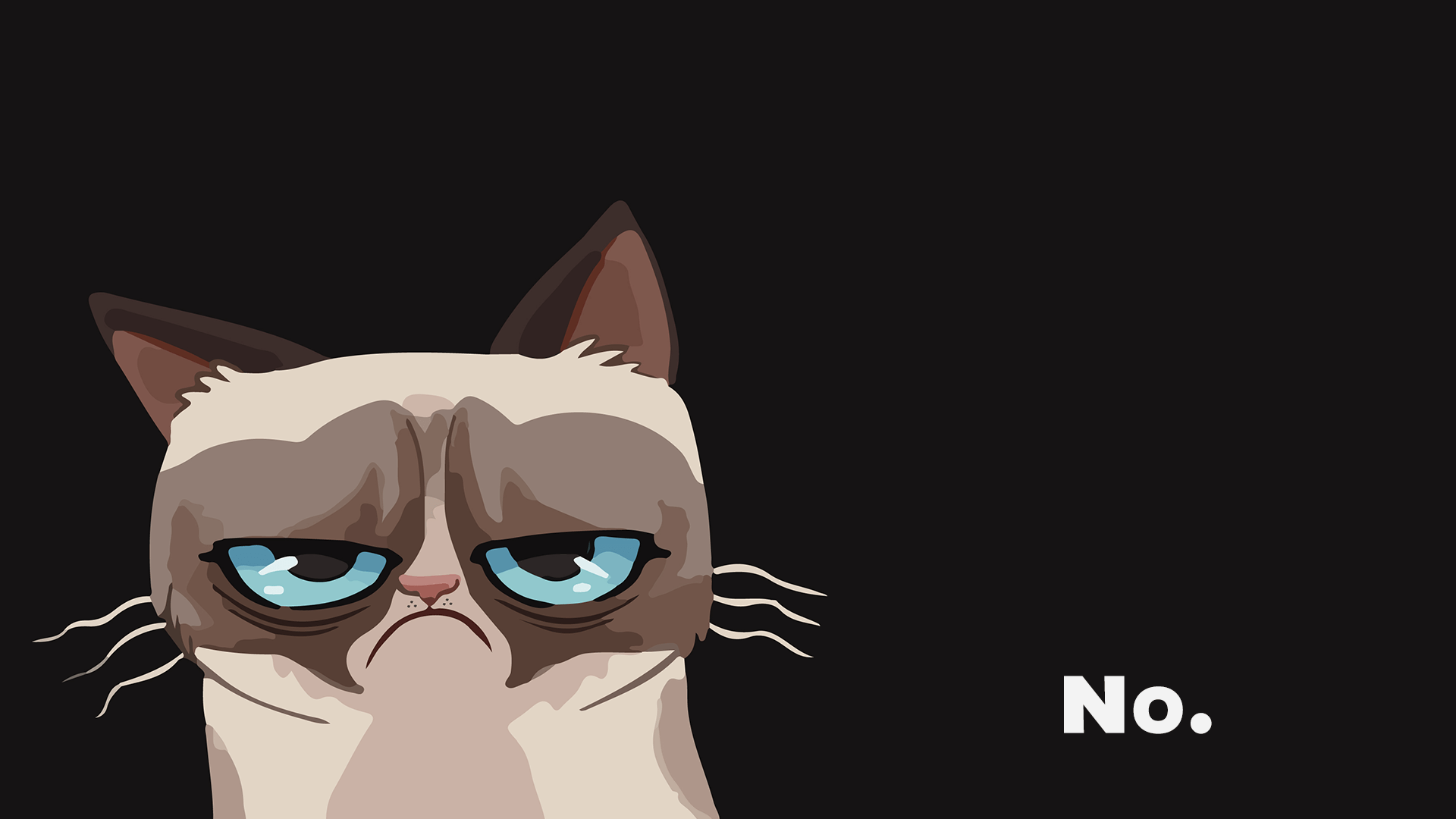 Grumpy Cat Wallpaper 5 1920x1080 1113 Kitten Res