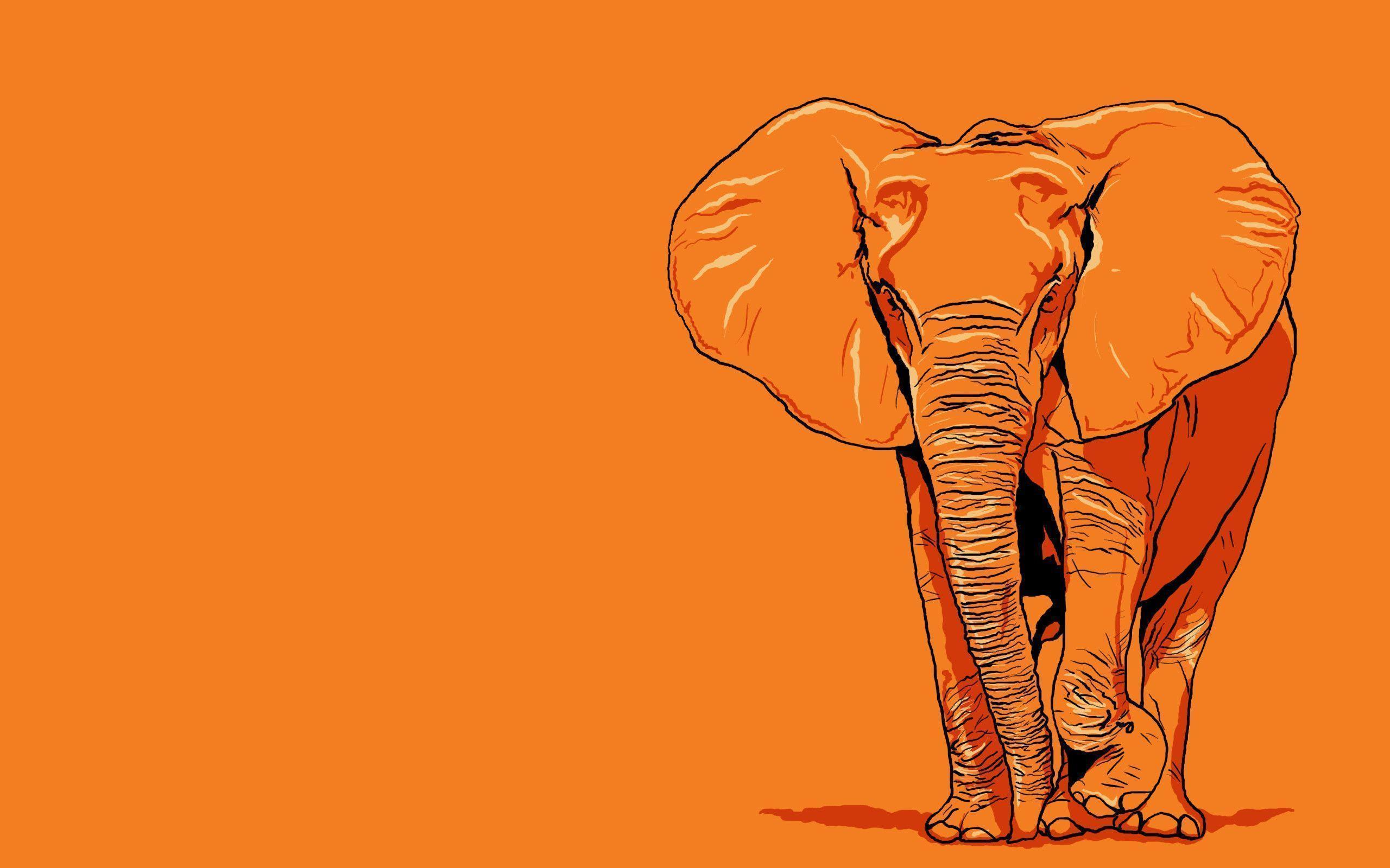 Elephant Wallpaper Art - Animal Wallpapers (7112) ilikewalls.