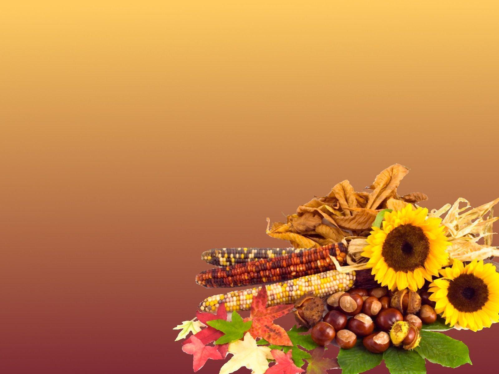free thanksgiving screensavers wallpapers