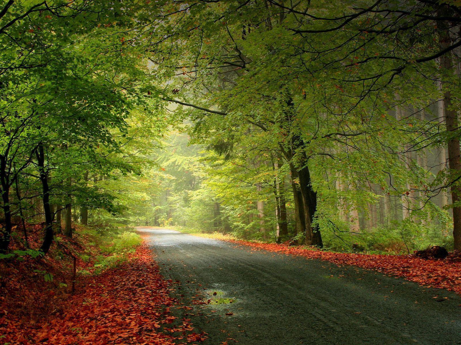اروع صور من الطبيعة Best Nature Wallpapers Bsbd0Uu