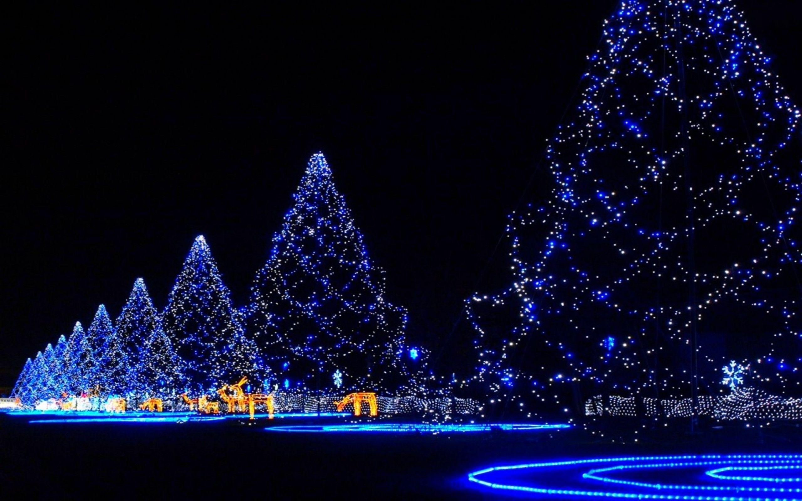 Xmas Stuff For > Blue Christmas Lights Wallpapers