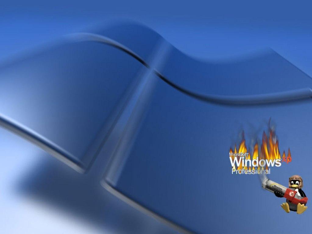 Windows xp professional background