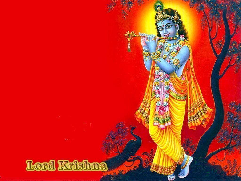 Gopal Krishna | HINDU GOD WALLPAPERS FREE DOWNLOAD