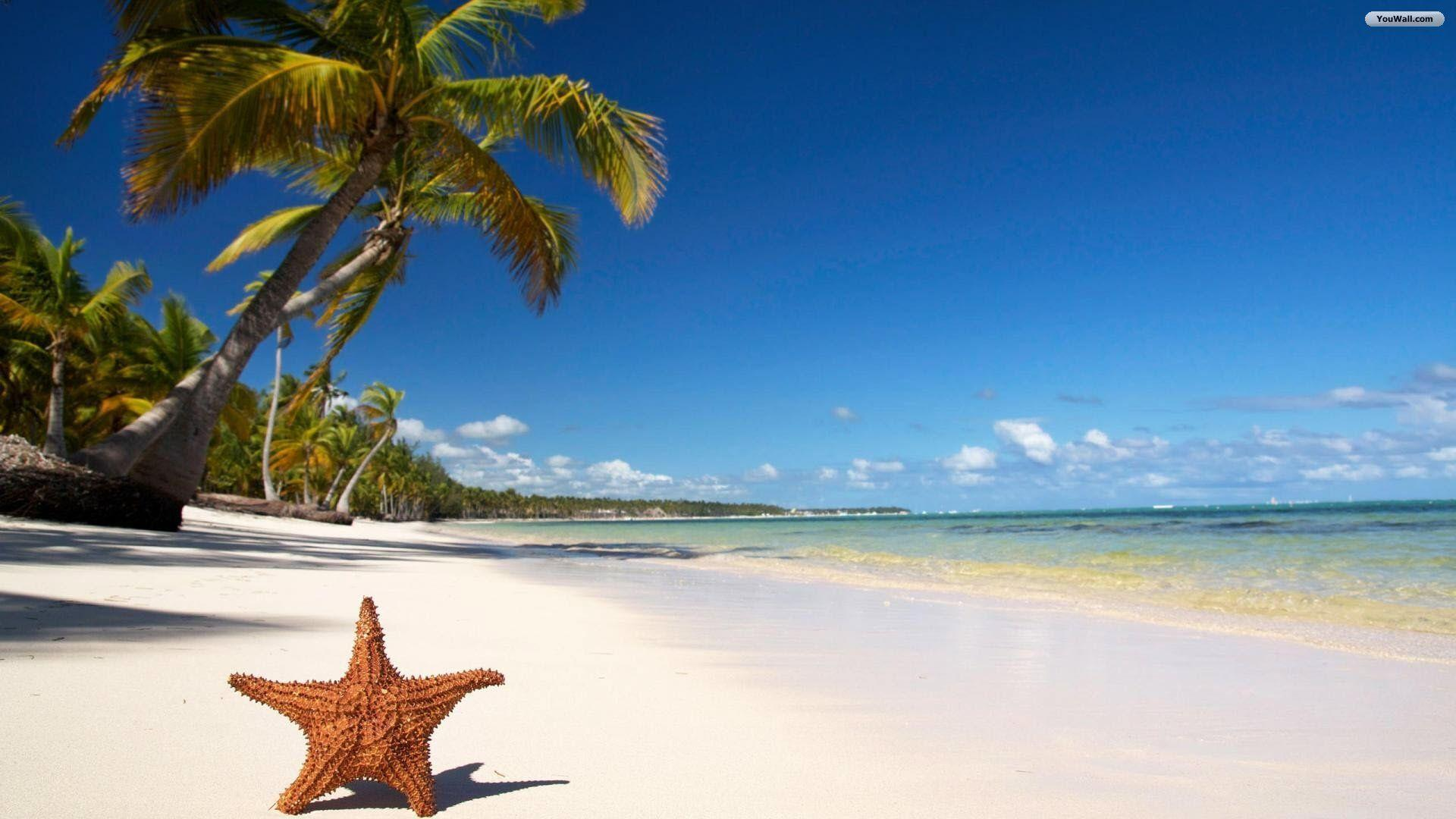 Hd Tropical Island Beach Paradise Wallpapers And Backgrounds: Free Tropical Beach Wallpapers