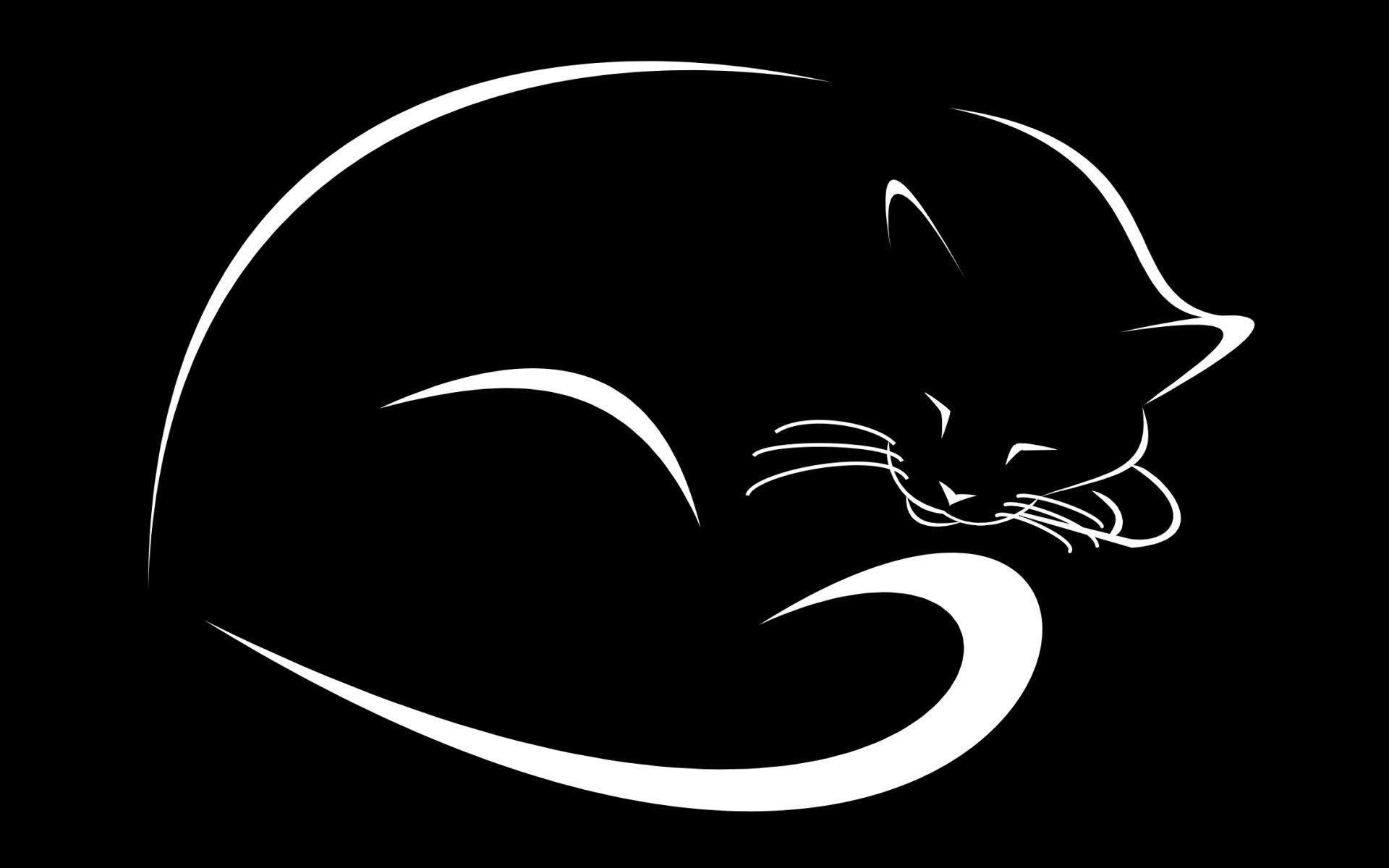 Wallpapers Black Cat