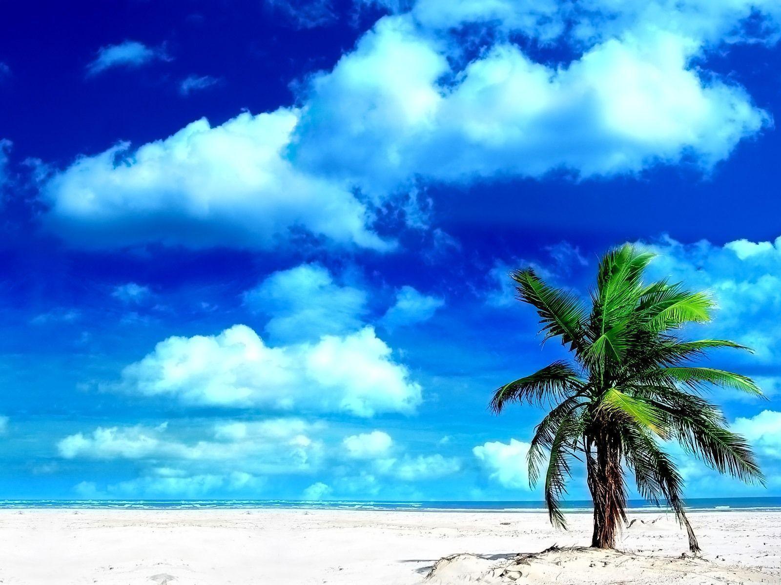 Sandy Beach Wallpaper: Jamaica Beach Wallpapers
