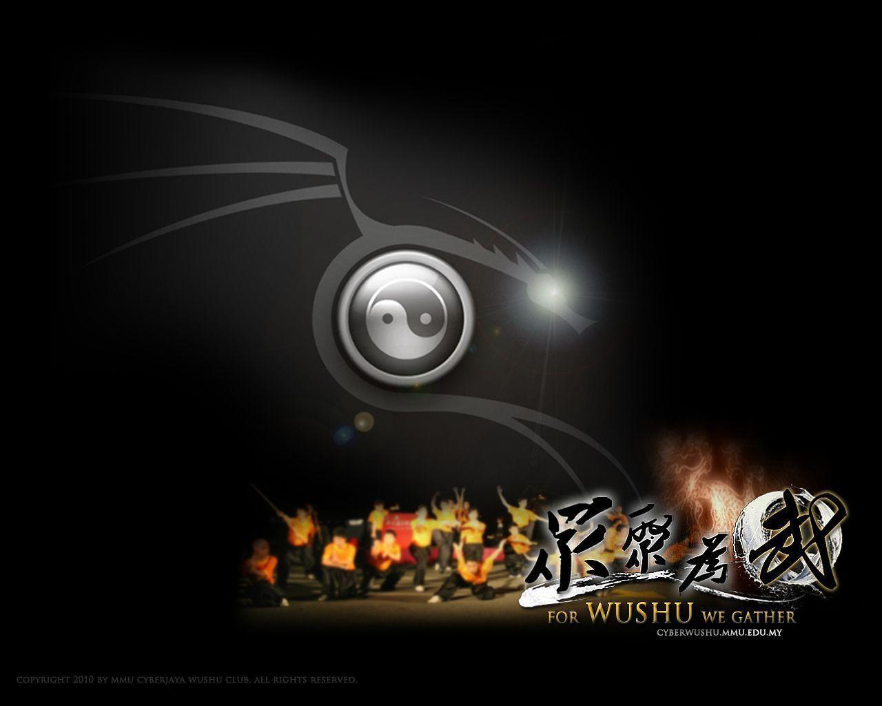 Image For > Wushu Sanda Wallpapers