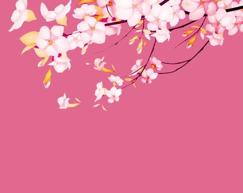 sakura.flower-wallpaper - Dhoomwallpaper.com | Latest HD Wallpaper ...