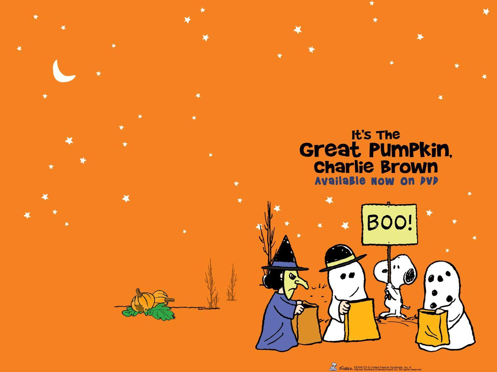 It's The Great Pumpkin Charlie Brown Quotes Great Pumpkin Charlie Brown Wallpapers  Wallpaper Cave
