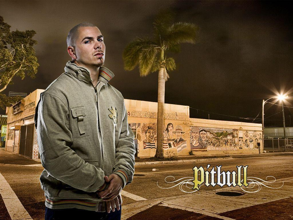 Pitbull Rapper Wallpapers For Computer 4542 Wallpaper
