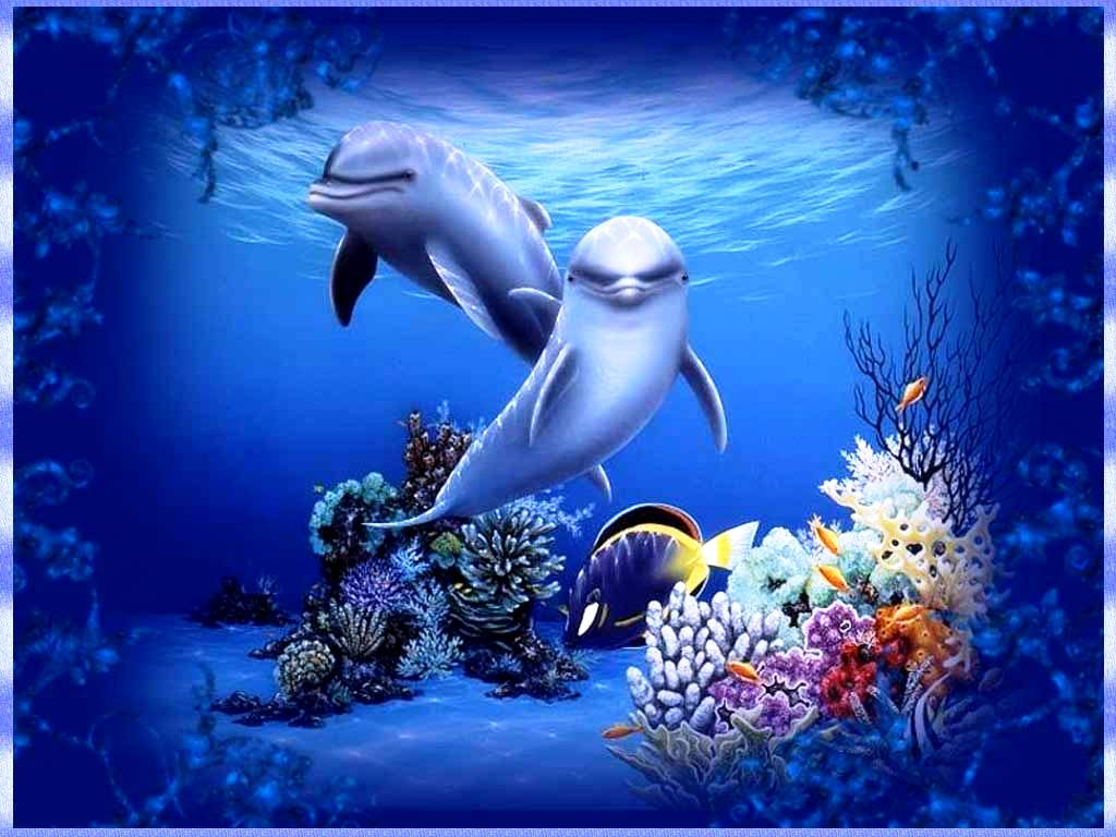 Free dolphin wallpapers for desktop wallpaper cave for Wallpaper home animation
