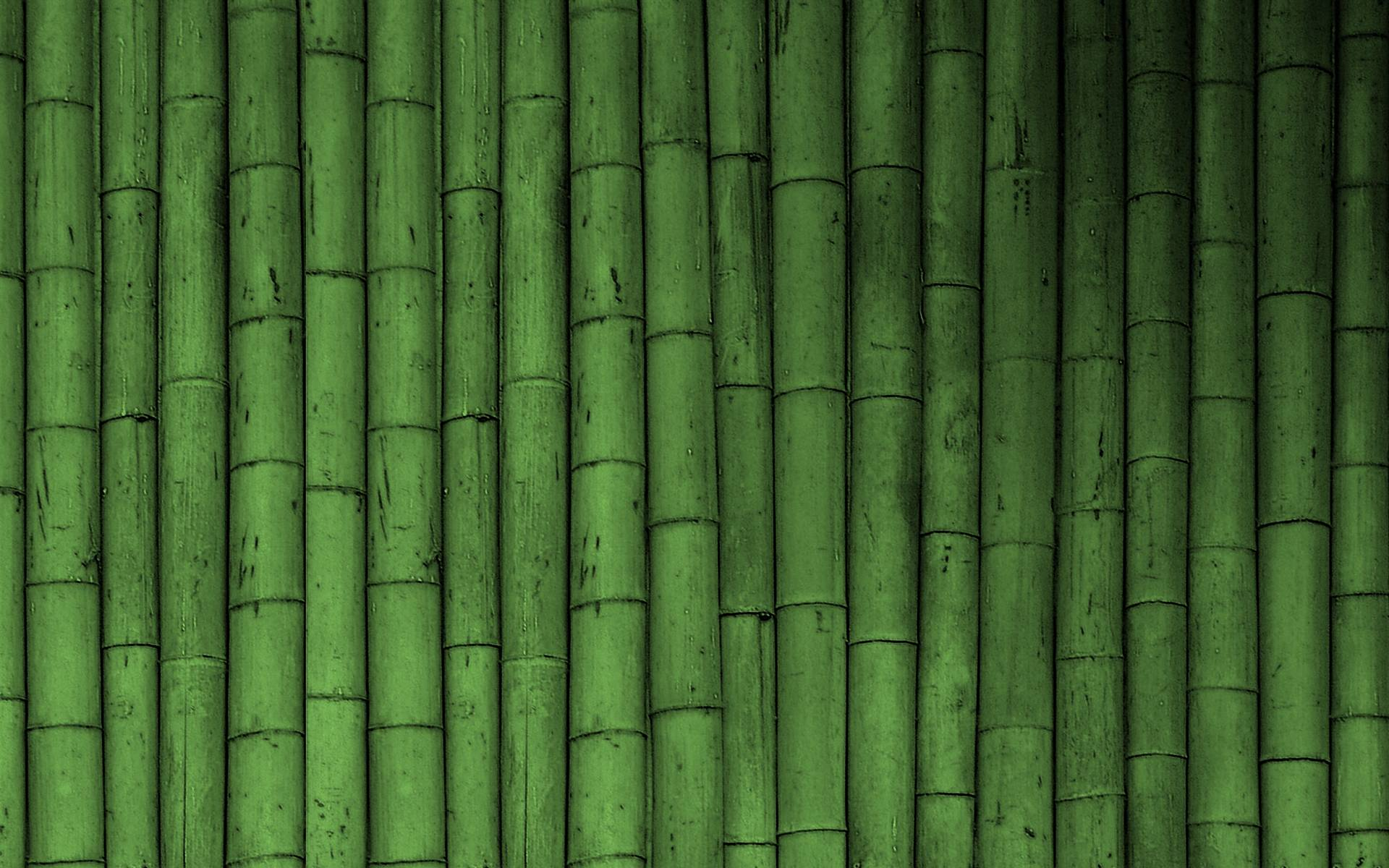 bamboo wallpaper by doantrangnguyen - photo #20