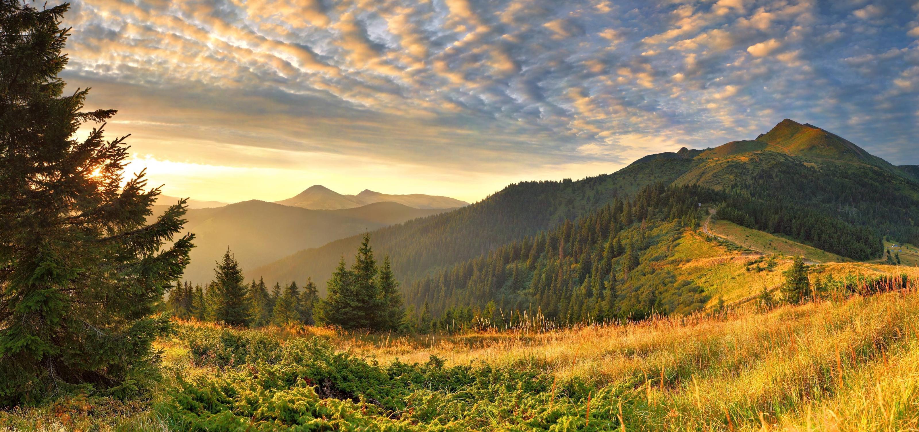 Landscape Backgrounds Image