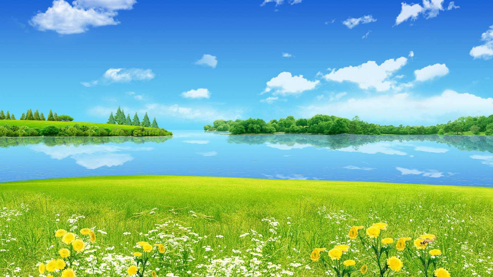 Nice Nature Wallpapers
