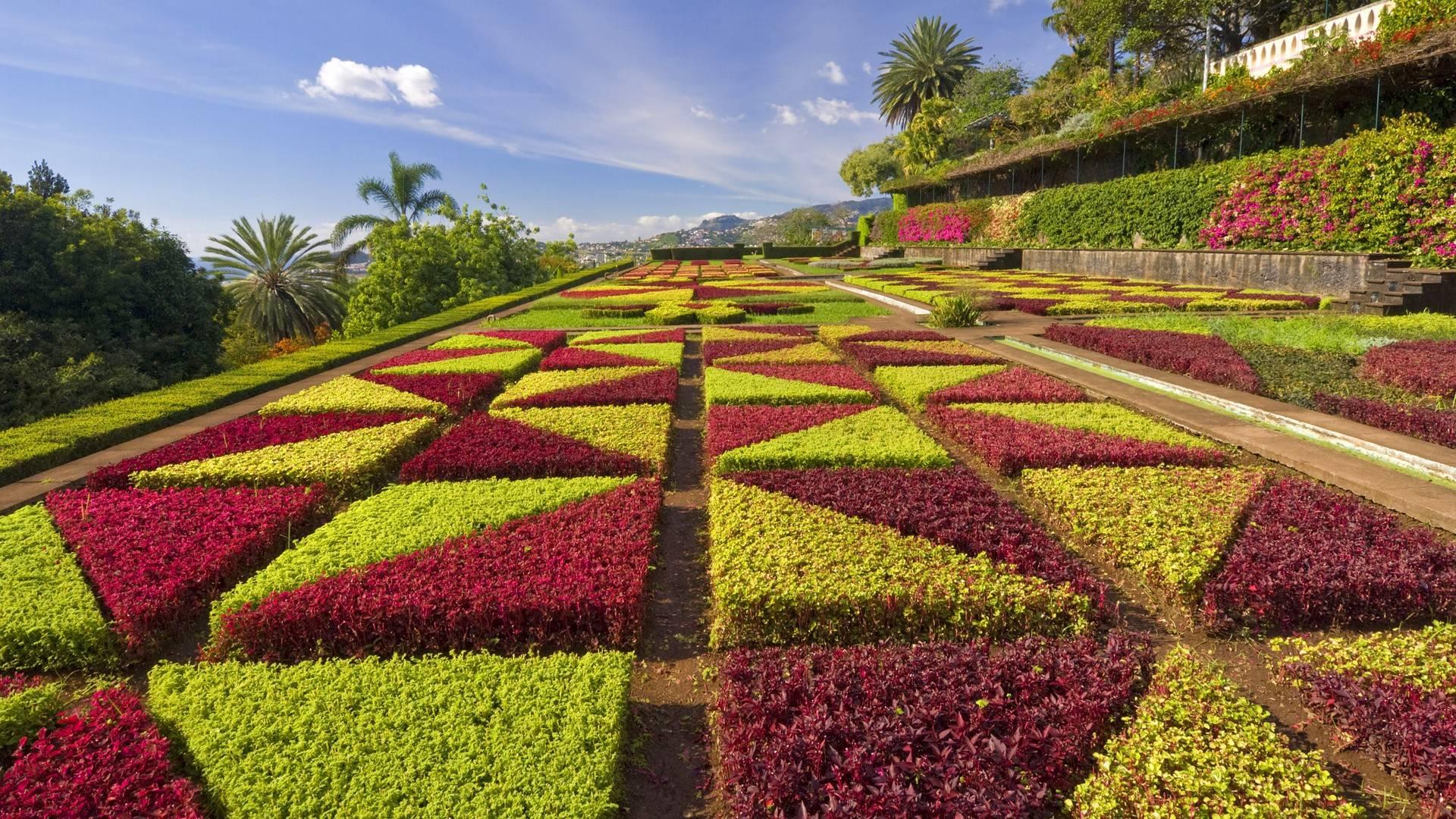 wallpaper flower garden wallpaper wallpaper flower garden hd - Flower Garden Wallpaper