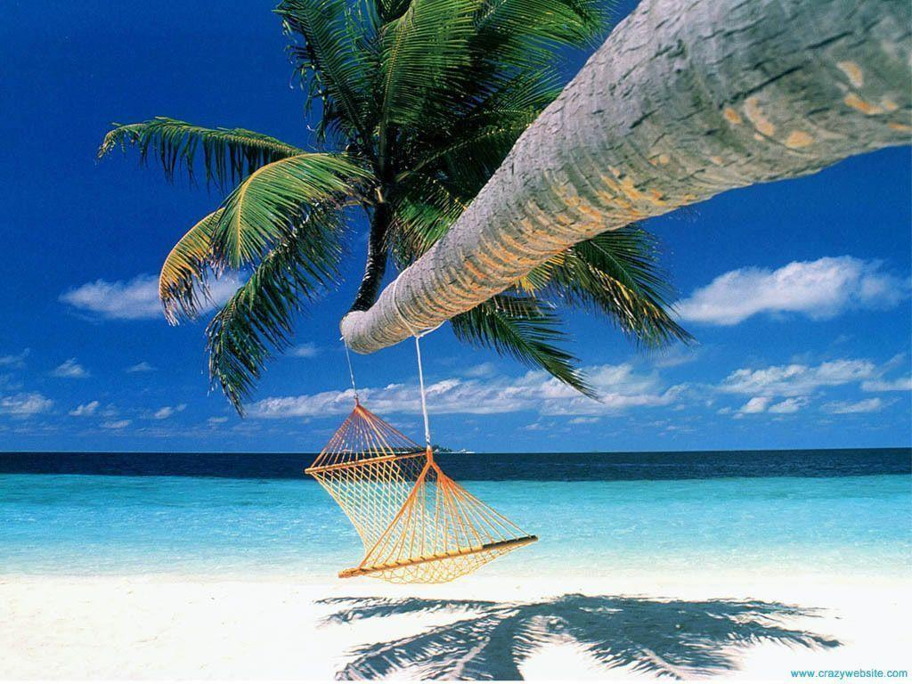 Tropical Island Beach Hammock Wallpapers Desktop