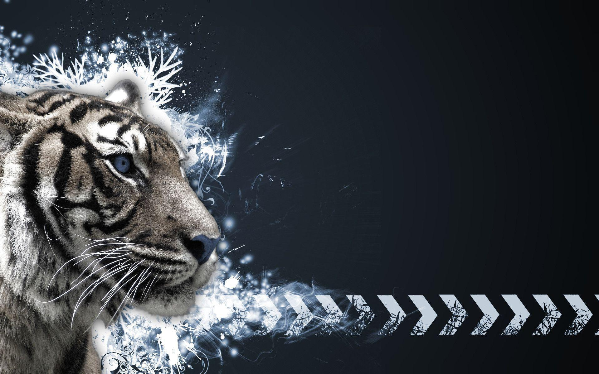 wallpaper hd white tiger - photo #28