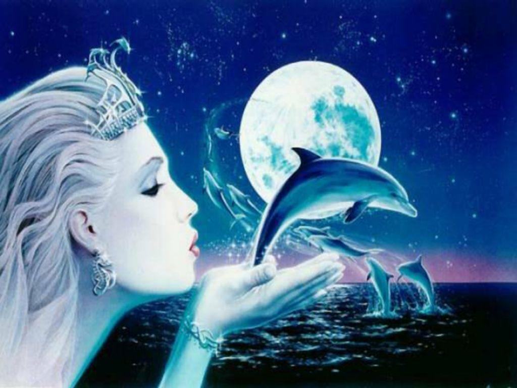 Free Dolphin Wallpaper | coolstyle