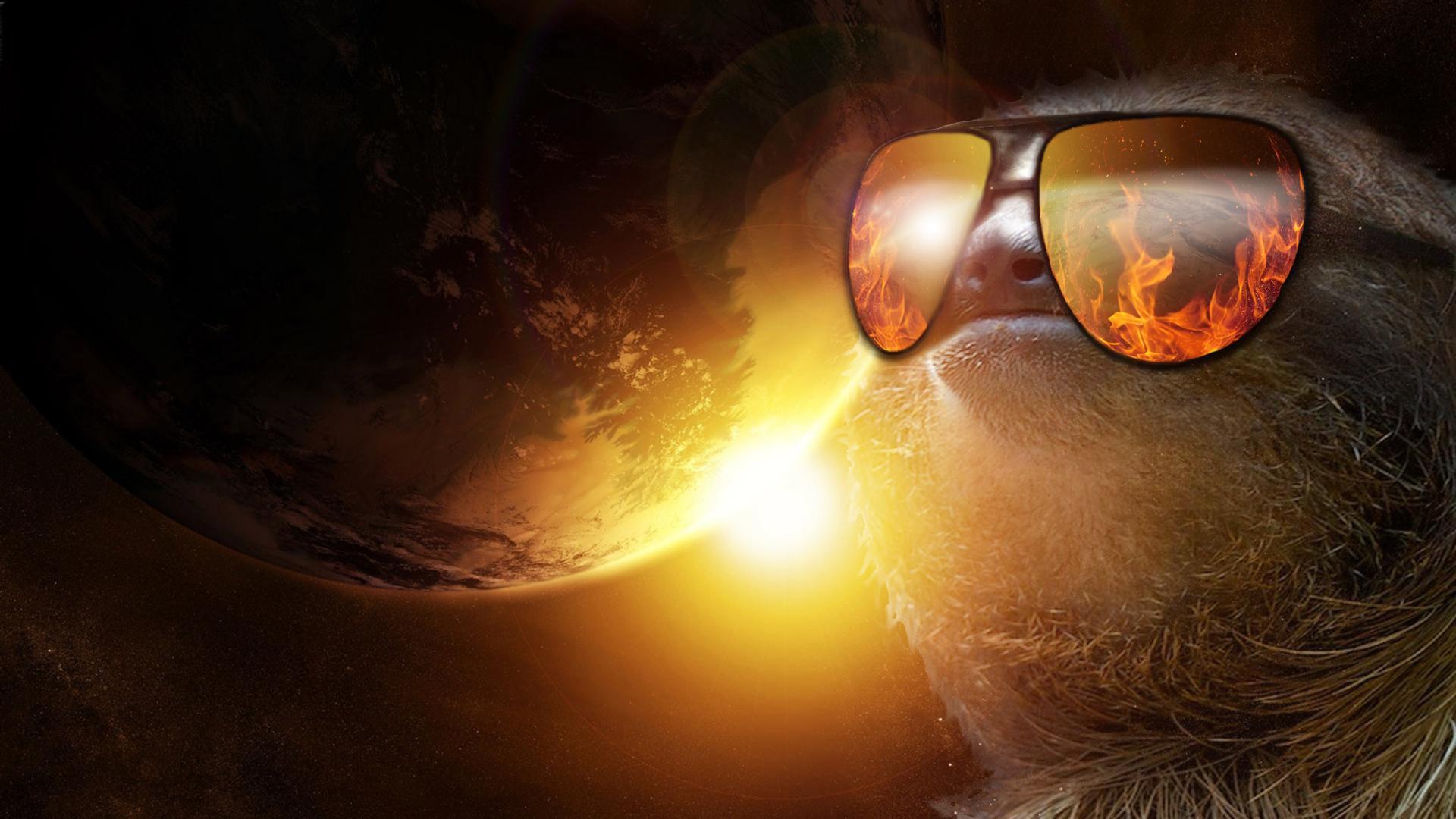 sloth sunglasses wallpaper