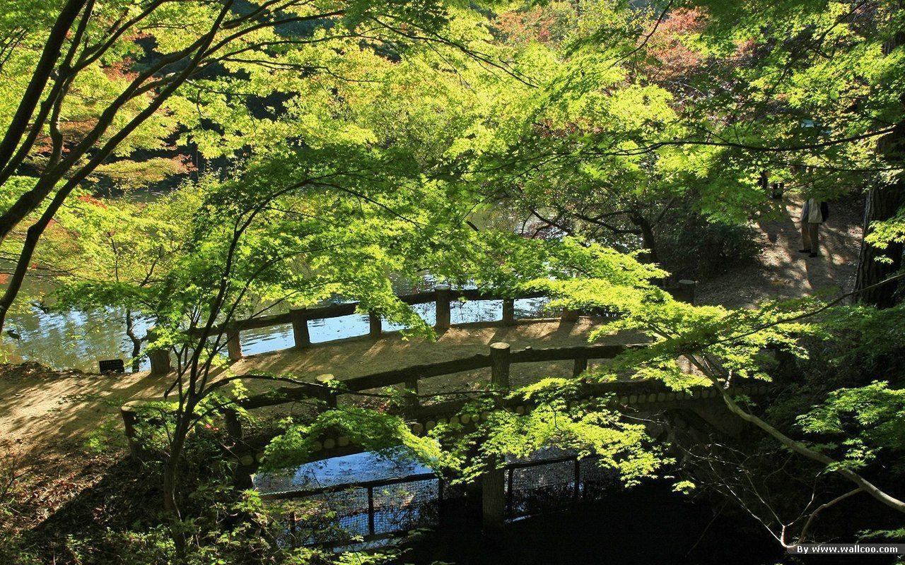 Wallpapers Japanese Garden