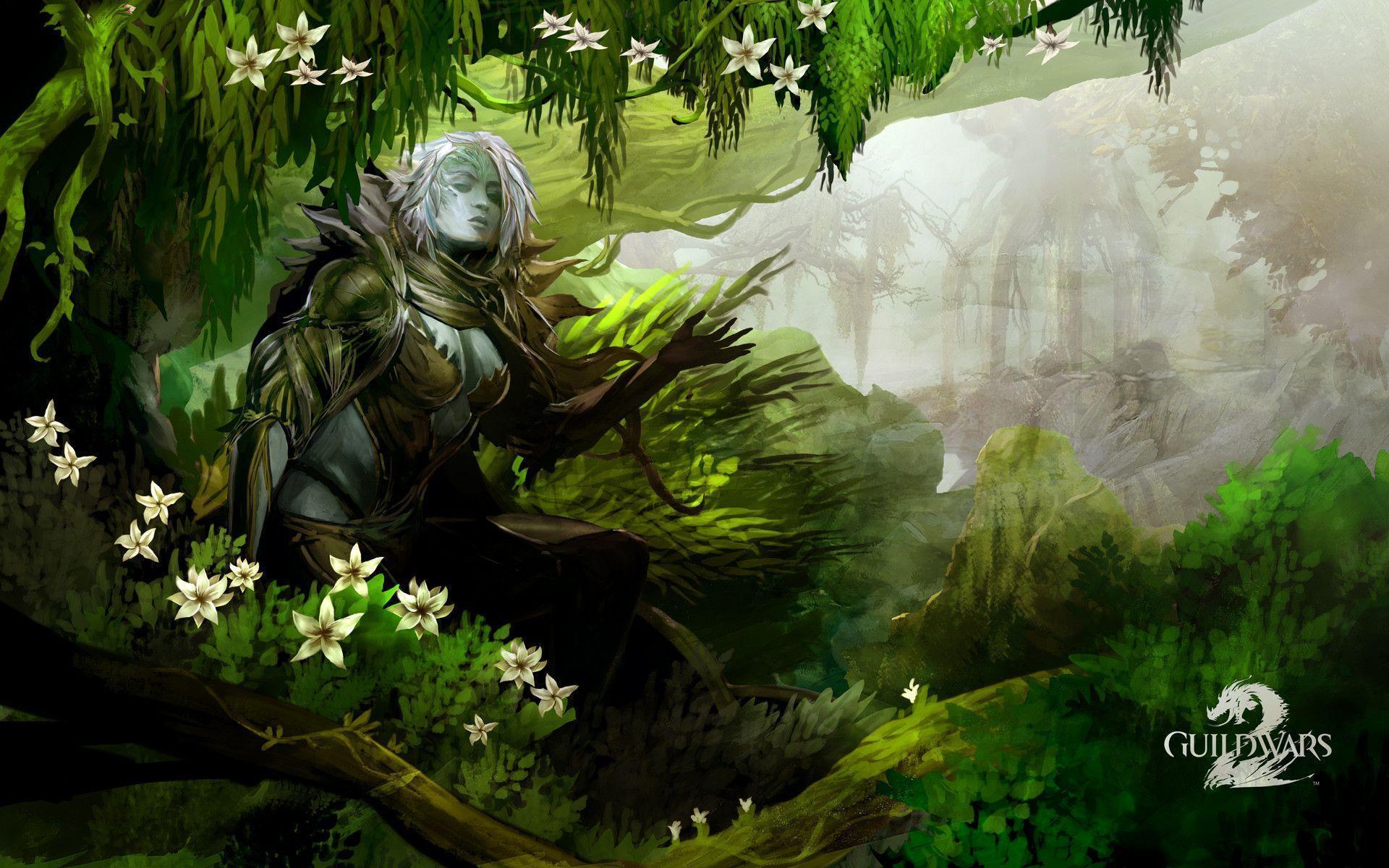HD Guild Wars 2 Wallpapers - Wallpaper Cave