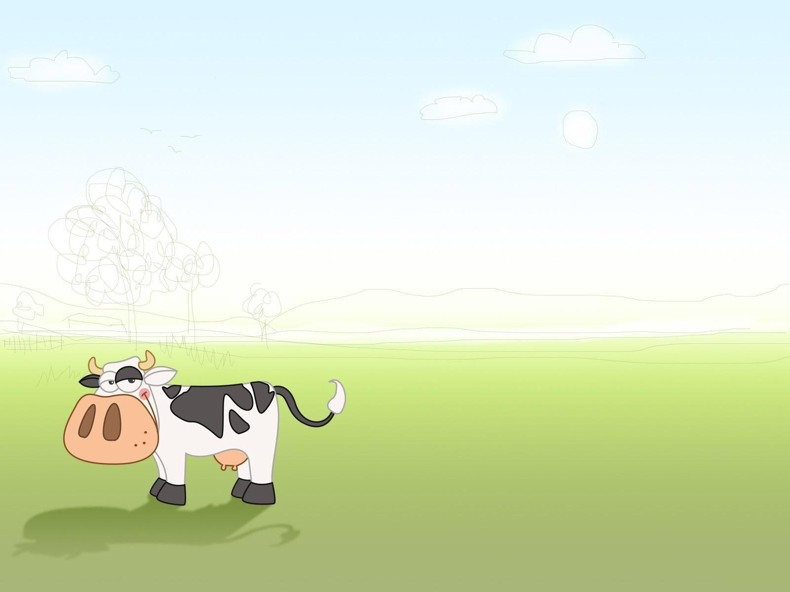 cow wallpapers wallpaper cave