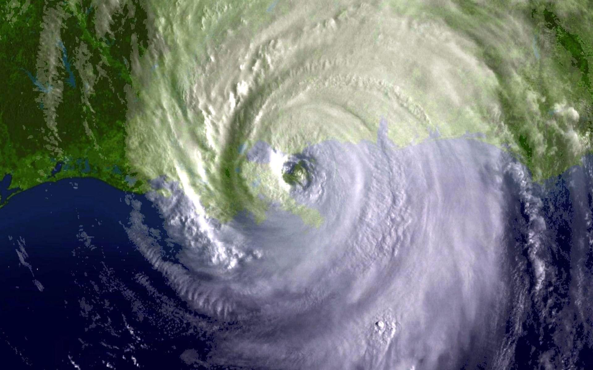 Hurricane Katrina Wall...