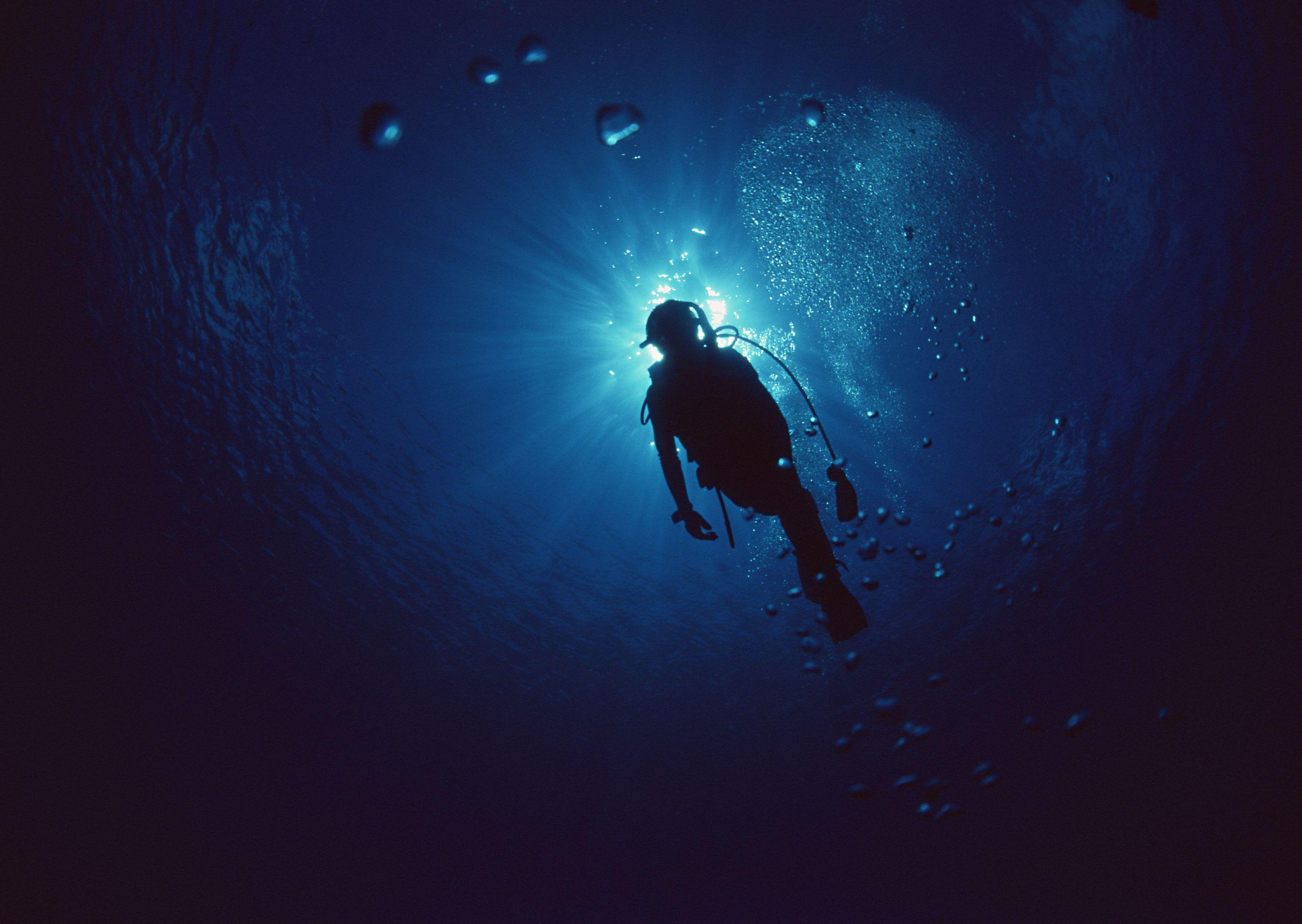Free Scuba Diving Wallpapers