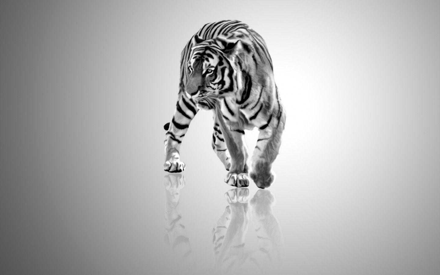 wallpaper hd white tiger - photo #34