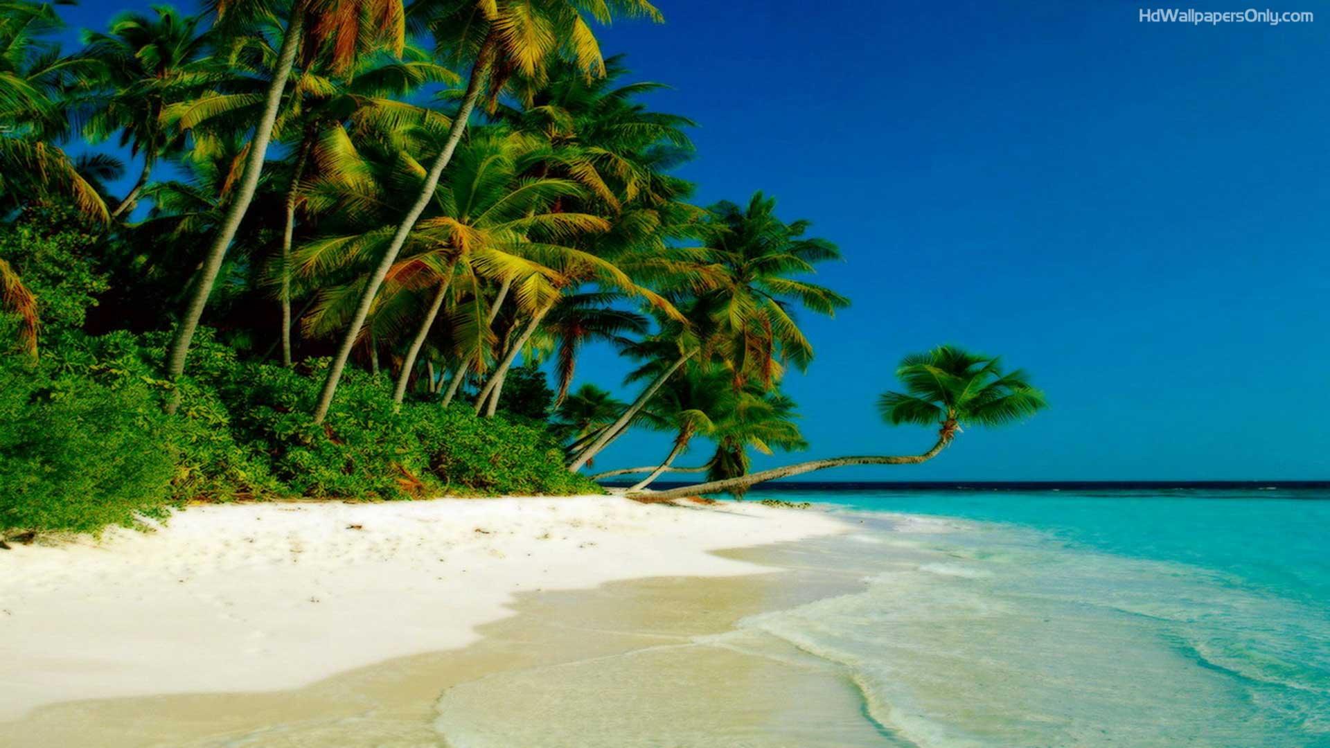 beach-hd-wallpaper.1080p.jpg
