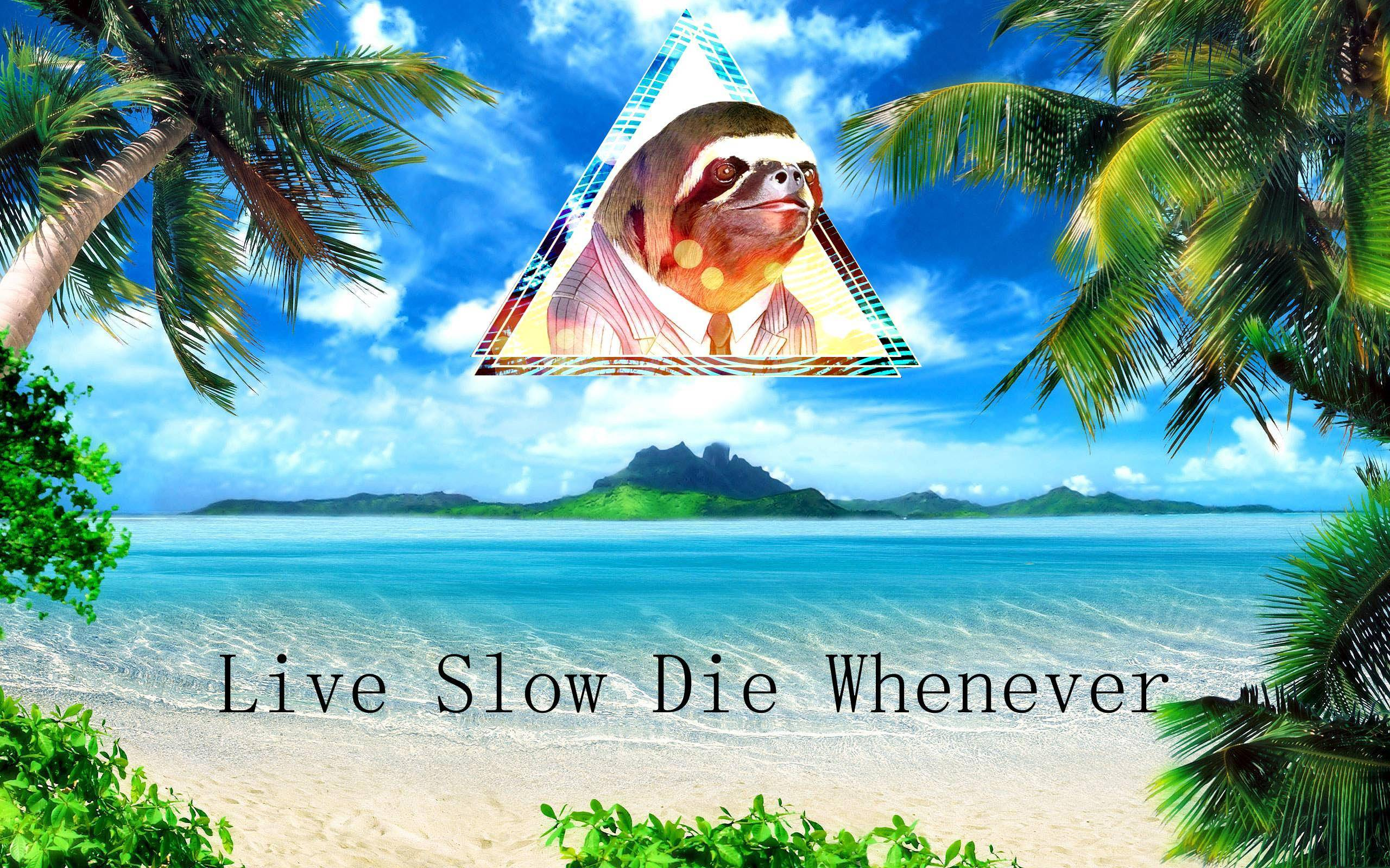 Live Slow, Die Whenever. : sloths