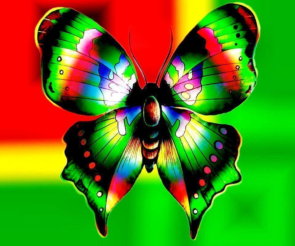Butterfly Wallpaper Rainbow Butterfly Wallpaper Hd: Free Butterfly Wallpapers
